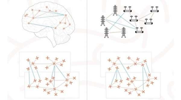 Científicos argentinos logran avances en redes artificiales analizando conexiones cerebrales